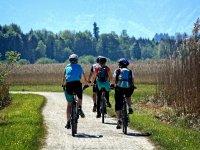 Tour en bicicleta en el Penedes