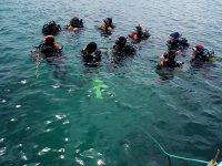 Diving Grupo Sesimbra Portugal