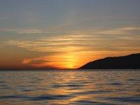 海豚在日落时穿越直布罗陀海峡