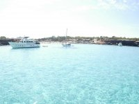 Cruises to enjoy
