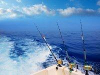 Salida de pesca por la Bahía de Palma