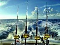 Pesca en la Bahía de Palma