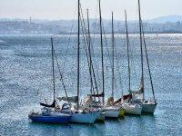 varios veleros en el agua colocados en fila