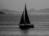 velero en el mar navegando