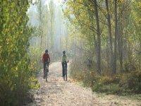 Excursiones en la naturaleza