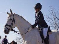 骑马在学校