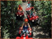 Tour Cozumel