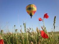 Vuelo en globo Madrid y Segovia