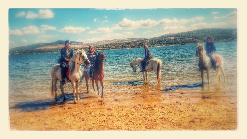 res_o-34330-rutas-a-caballo_de_maria-inmaculada-sanchez-torrealba_1476108393881.jpg