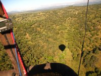 Balloon ride through forests