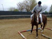 俱乐部学习打开马