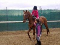Jugando a la pelota desde el caballo