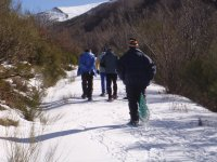 In the field with snowshoes