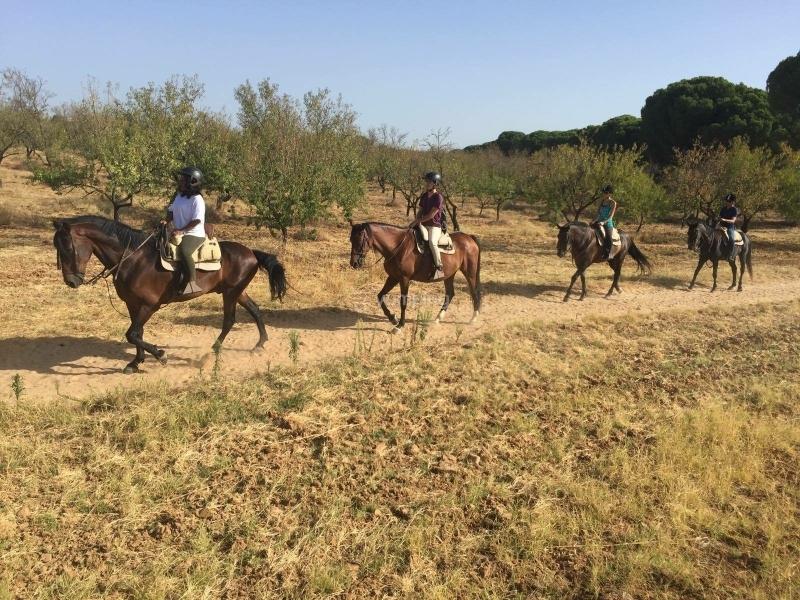 res_o-38060-rutas-a-caballo_de_jomara-isabel-basurto-guailla_15033389625442.JPG