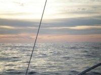 logopescaibiza海底捞的经验