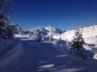 Nieve en Navarra