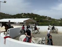 Campamento de equitación para niños semanala