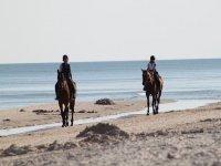 ven a vivir la equitacion
