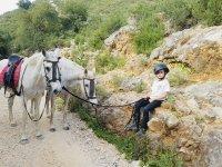 Pequeño junto a los caballos en el campo