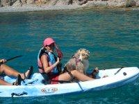 Hasta los perros se atreven con el kayak