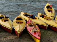 several yellow kayaks on the shore