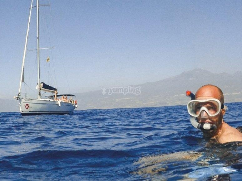 Avistamiento de cetáceos en Tenerife con niños