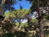 Pasarela de redes en La Juliana