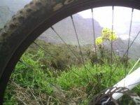 Naturaleza y ciclismo