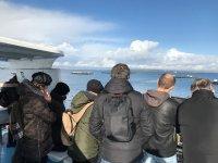 Contemplando la Rias Baixas dalla barca