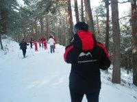 En el bosque nevado