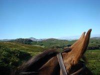 paisaje sobre el caballo