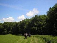 horse route