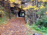 进入峡谷秋天的路径-999山地自行车路线 - 雪鞋