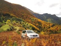 el coche entre la montaña mas bella