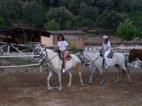 Aprende a montar a caballo.