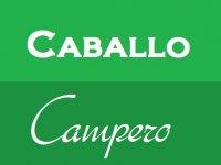Caballo Campero