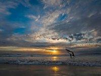 Windsurf y puesta de sol
