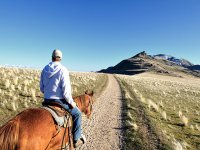 Pasea a caballo por la montana