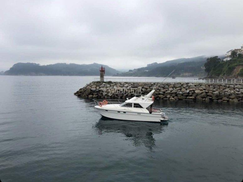 Paseo en catamarán Lastre