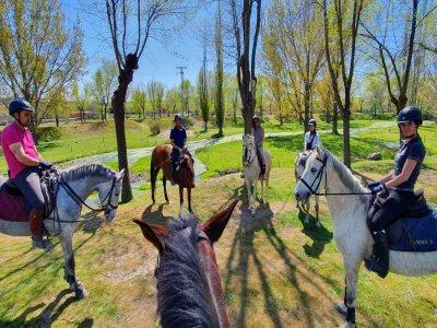 AP Sport Horses Rutas a Caballo