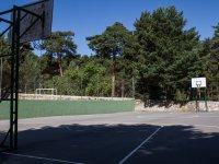Zonas deportivas del camp