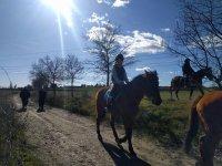 Ruta a caballo bajo el sol