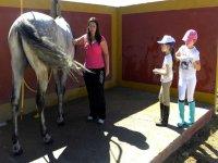 conociendo el mundo equino