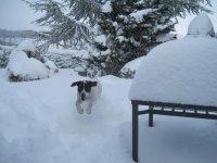 Temporada de nieve
