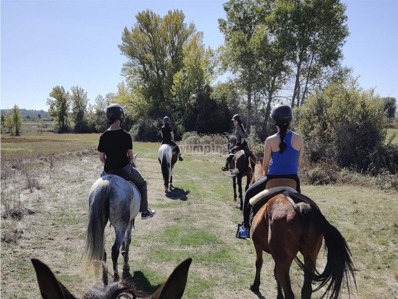Paseo a caballo San Miguel del camino