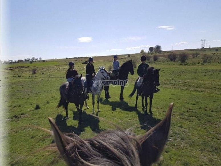 Paseo en caballo dócil