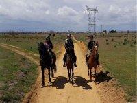 Paseo a caballo por el campo Leon