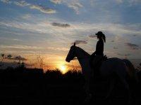 mujer a contraluz paseando a los lomos de un caballo