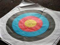 射箭练习射箭