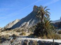 在塔韦纳斯的沙漠徒步logoisabelteguia参观